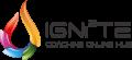 ignite coaching online hub - 3x